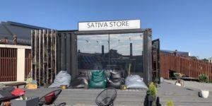 Kanep Sativa Store