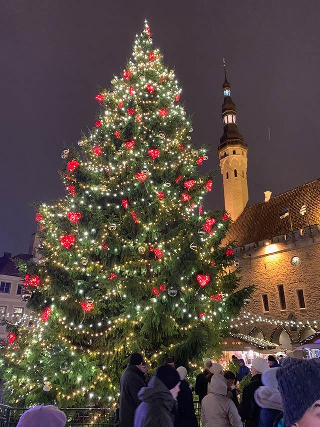 Tallinnan joulutorin joulukuusi