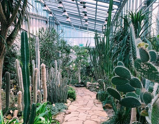 Tallinnan Kasvitieteellinen puutarha_4