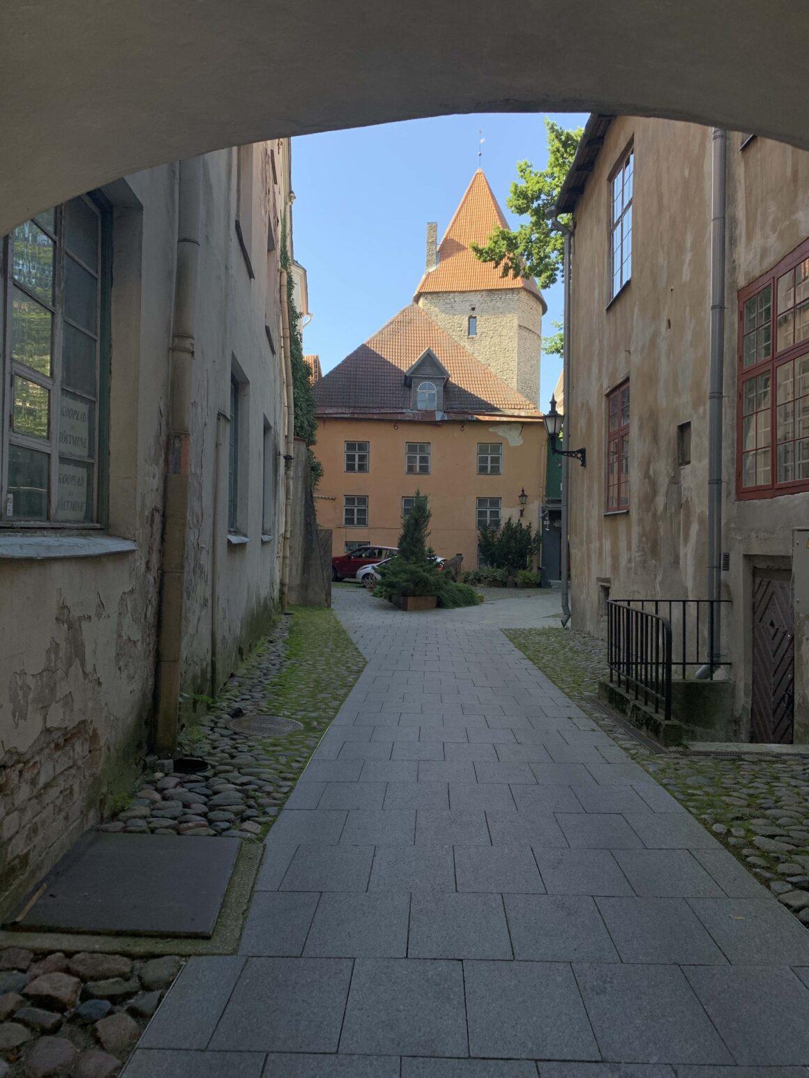 Viron luonnotieteellinen museo