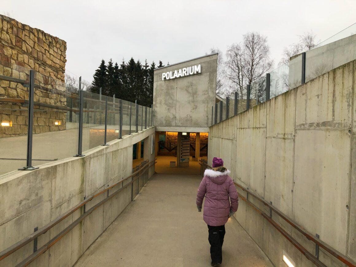 Tallinnan eläintarhan jääkarhumaailma