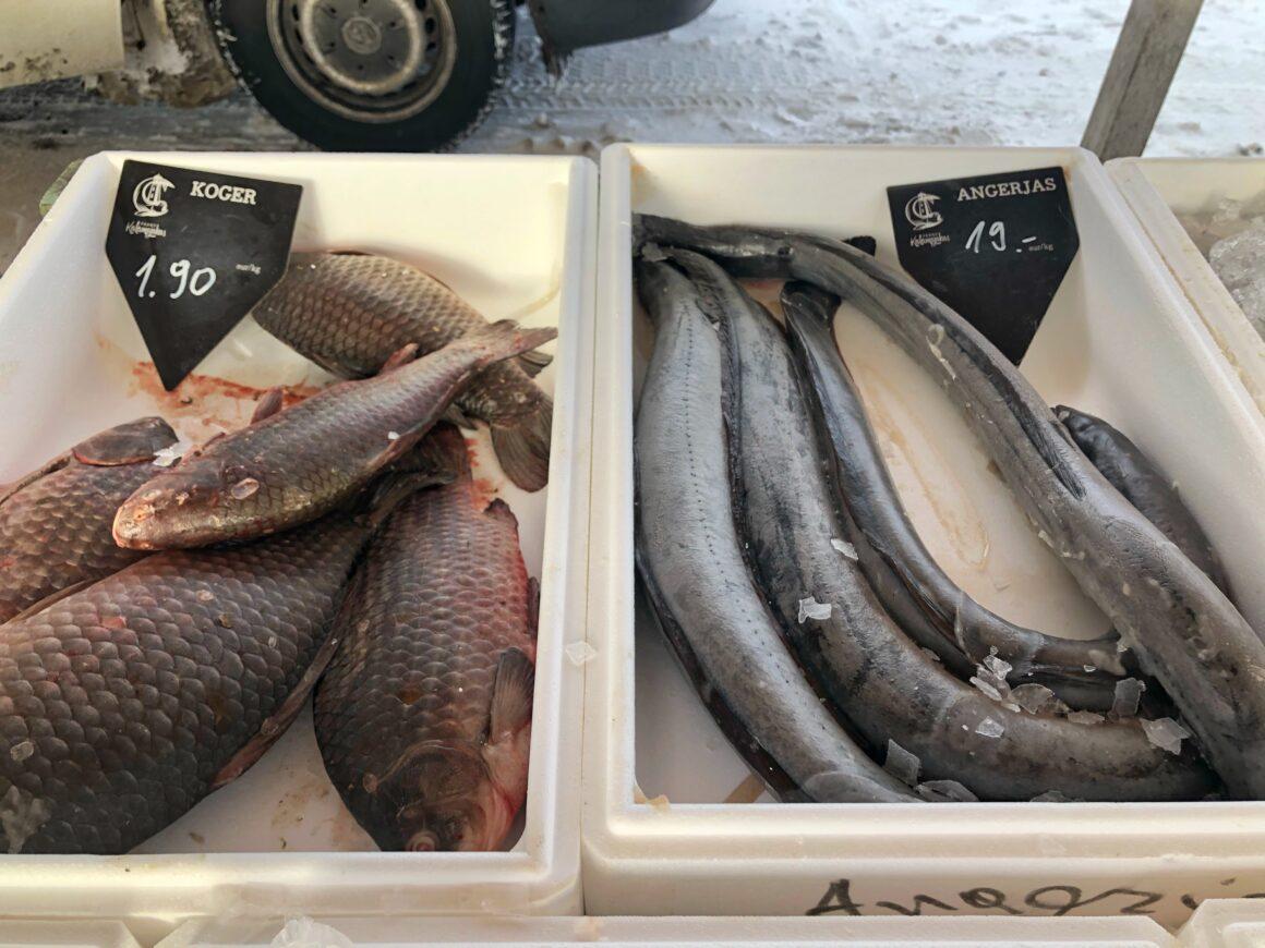 Kaloja Tallinnan kalatorilla