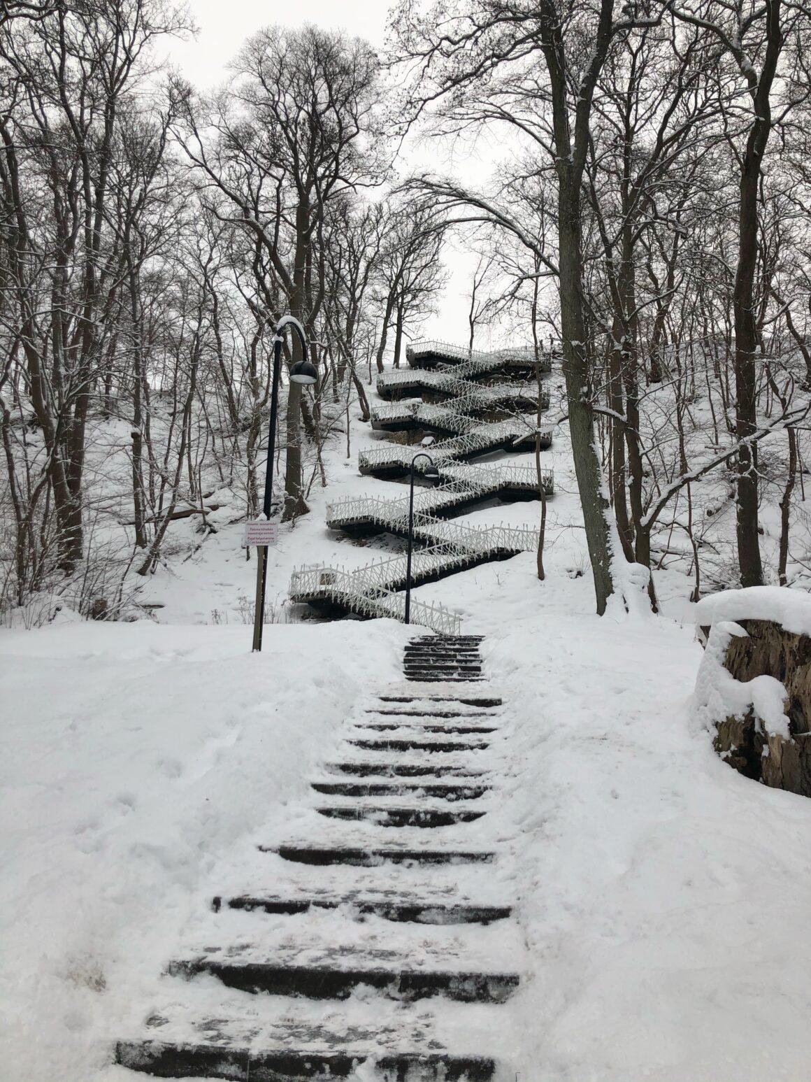 Põhjakonnan portaat kauempaa