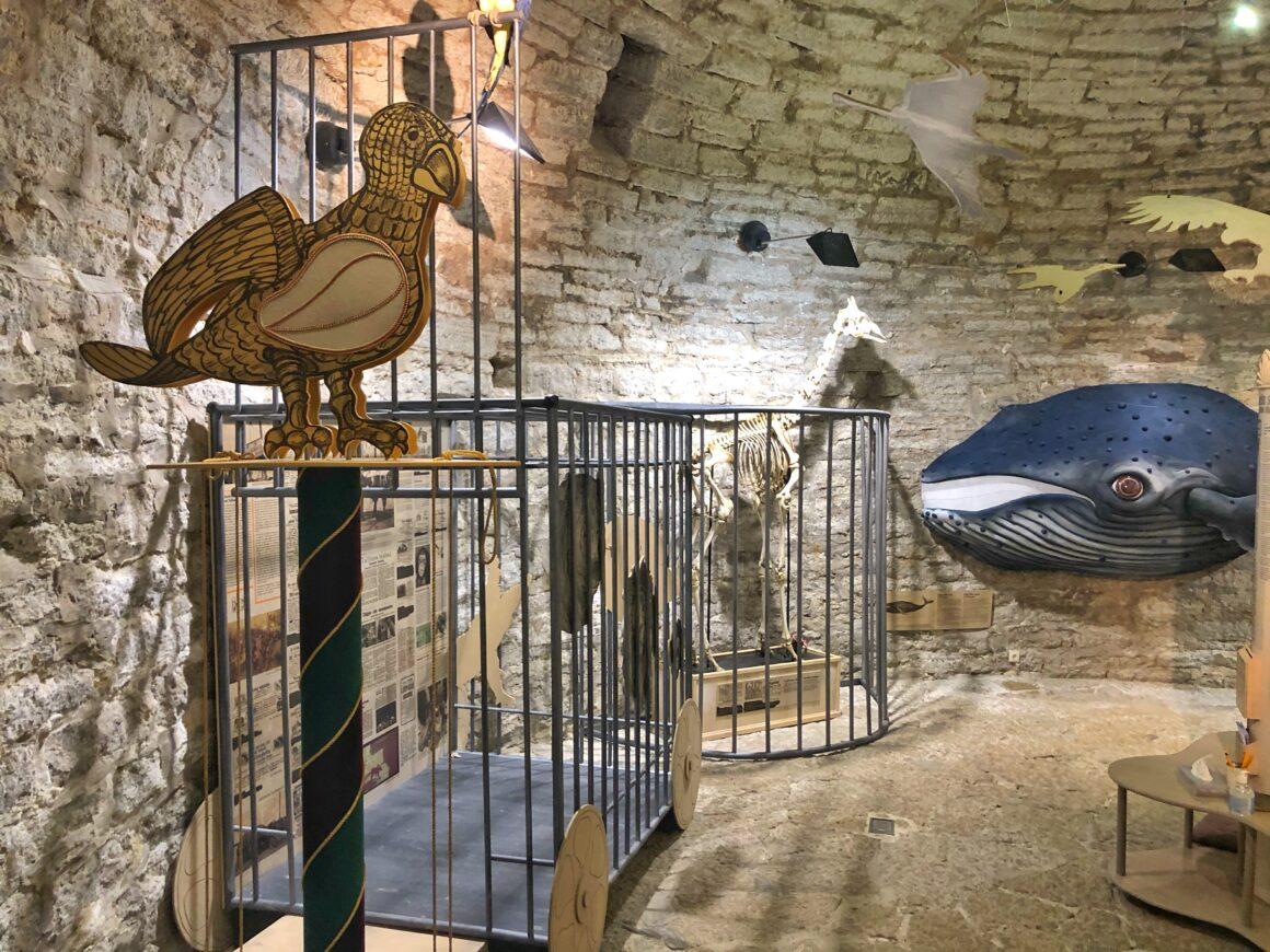 Eläinnäyttely Kiek in de Kökissä